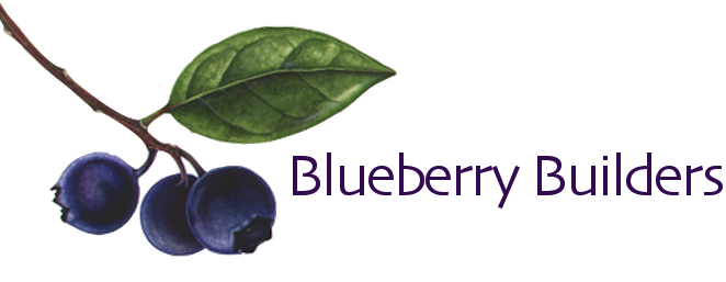Blueberry Builders